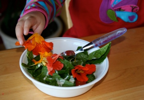 edible-flower-saladsize.jpg